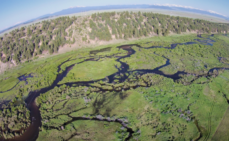 Healthy wetland systems like this one in the headwaters of Colorado's South Platte catchment naturally provide essential services to society while maintaining the integrity, stability, and beauty of the biotic community. Photo courtesy of Mark Beardsley.