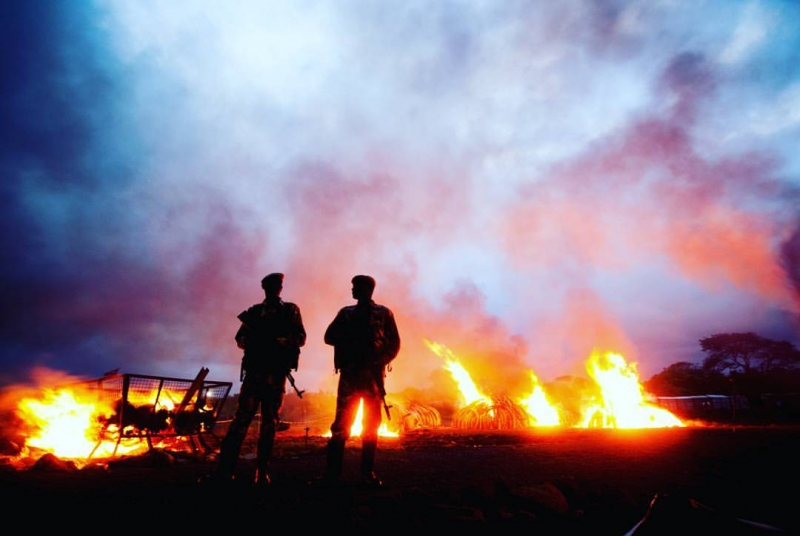 Follow Two Kenya Wildlife Service rangers are silhouetted by fire from burning ivory and rhino horn yesterday evening at Nairobi National Park. The message passed by the big burn is, 'If the ivory isn't on an animal, it's worthless. (Mwangi Kirubi)