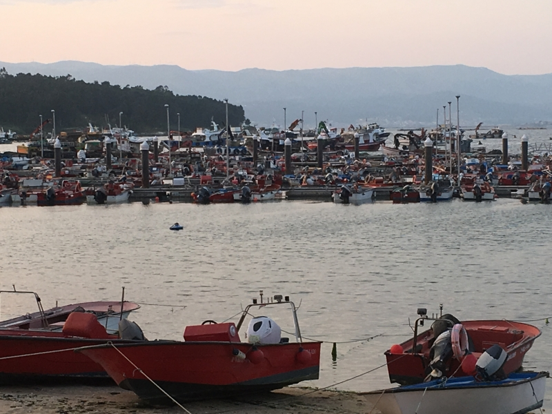 The EU held is First Conference on Fishing Quotas and the Purse-seine sector.