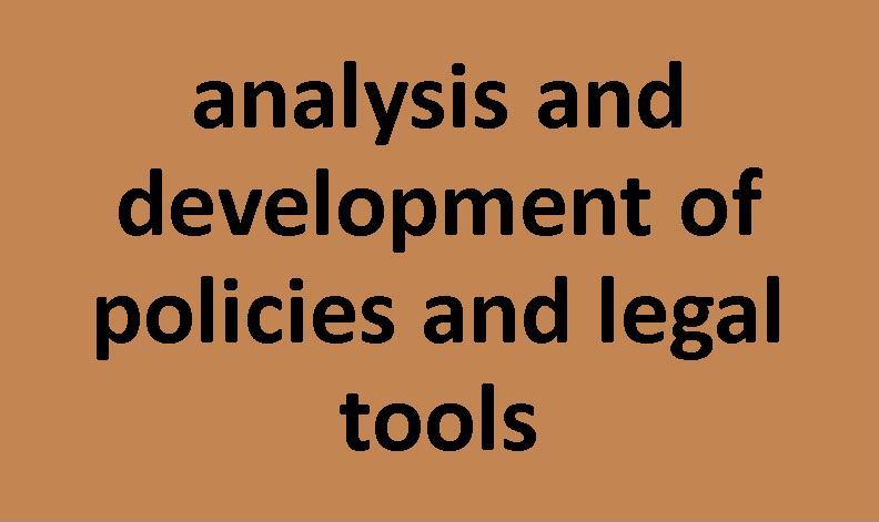 analysis and development of policies and legal tools
