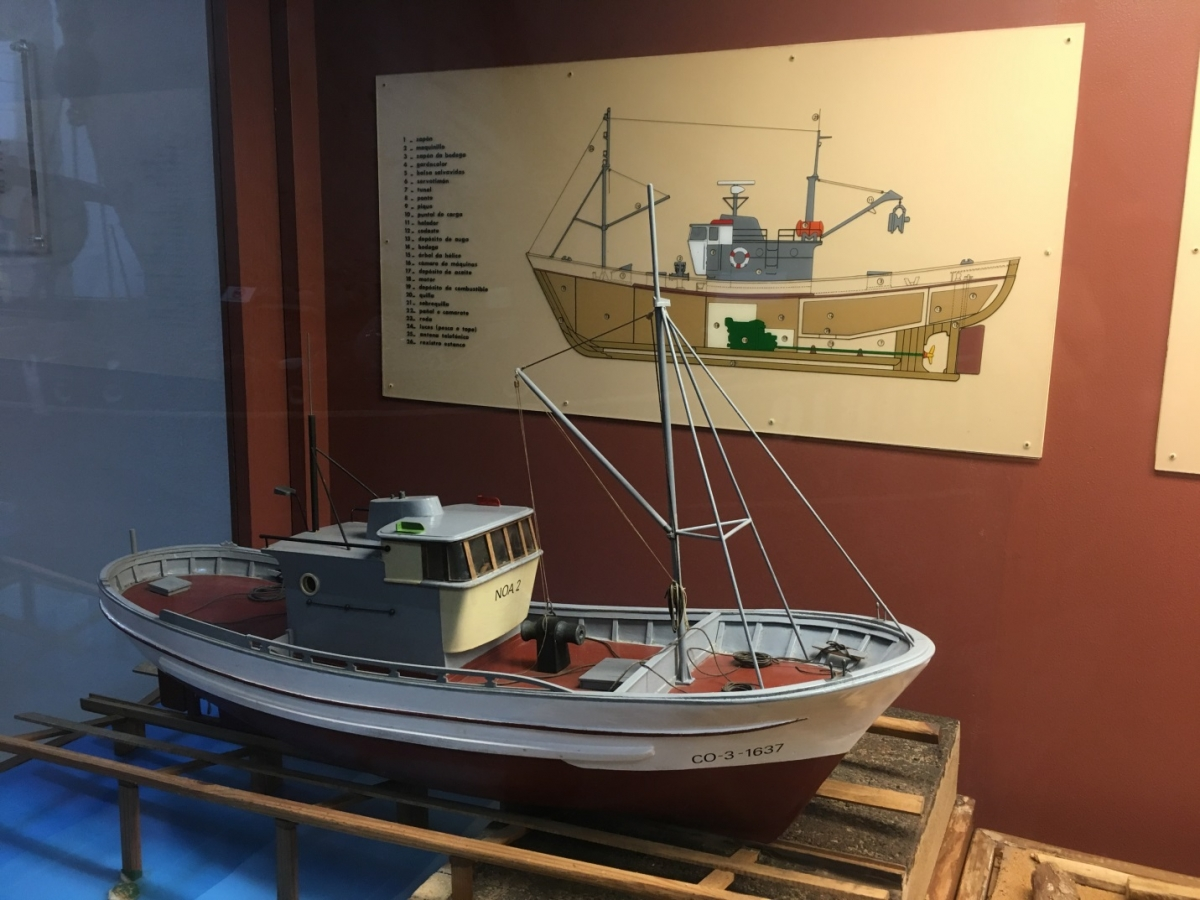 Model purse-seine vessels at the Galician National Museum in Santiago de Compostela