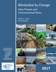 Blindsided by Change: Slow Threats and Environmental Policy