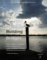 Building Bridges: Connecting the Overlapping Goals, Resources, and Institutions