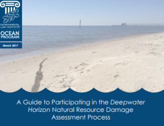 A Guide to Participating in the Deepwater Horizon Natural Resource Damage Assess