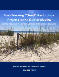 """Fast-Tracking """"Good"""" Restoration Projects in the Gulf of Mexico"""