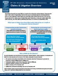 Claims & Litigation Overview