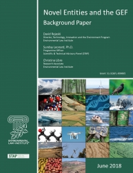 Novel Entities and the GEF: Background Paper