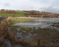 Usk floodplain, Caerleon, Jaggery