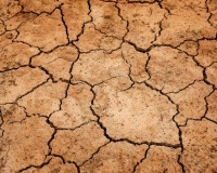 Drought affected ground