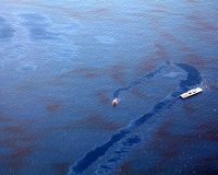 Oil cleanup Deepwater Horizon