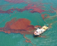 Skimming oil in the Gulf of Mexico during the 2010 BP oil spill (Photo